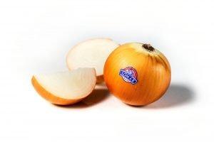 Cebolla Grano 1
